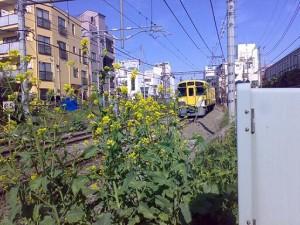 daingai-2008-03-29t08-40-13-1